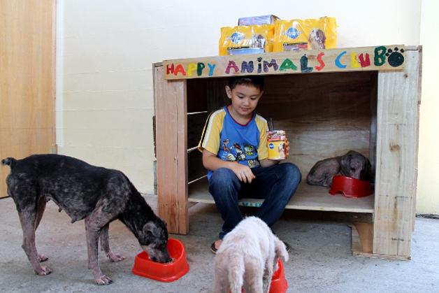 Criança cria um abrigo para cães de rua na garagem de casa