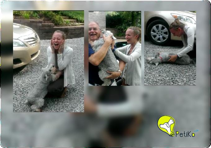 Cachorra se emociona e quase desmaia de emoção ao ver membro da família dois anos depois de partir