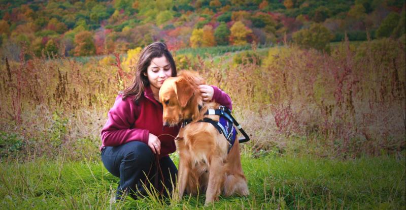 Animais de estimação deixam as pessoas mais saudáveis