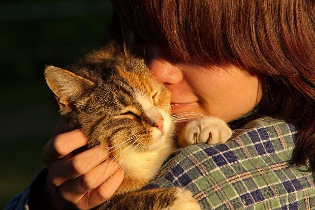 O dono do gato: criativo, detalhista e organizado