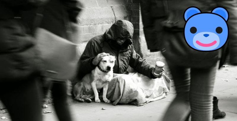 Provas de que o amor dos cães é o mais verdadeiro de todos