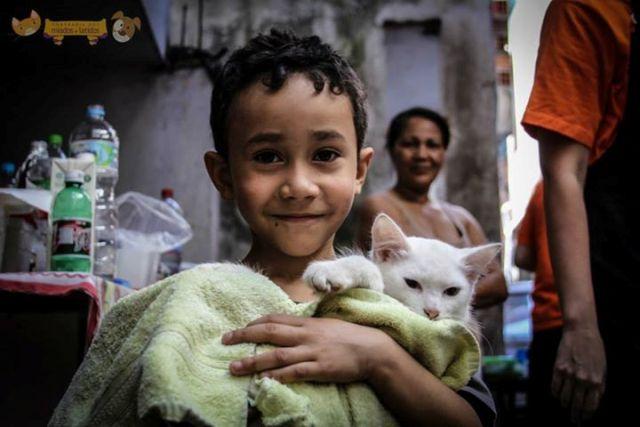 ONG faz mutirão para cuidar e castrar 120 animais de uma favela de São Paulo