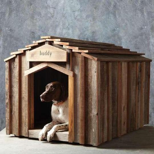 8 Espetaculares casinhas de cachorro feitas com material reciclado