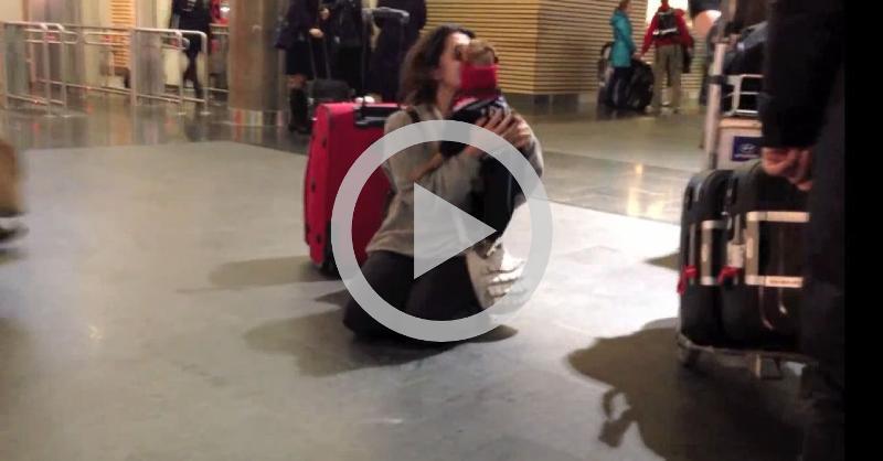 Cachorro reencontra dona no aeroporto e emociona a todos