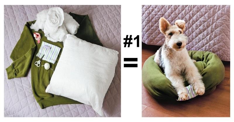 12 truques para tornar a vida de donos de cachorro mais fácil