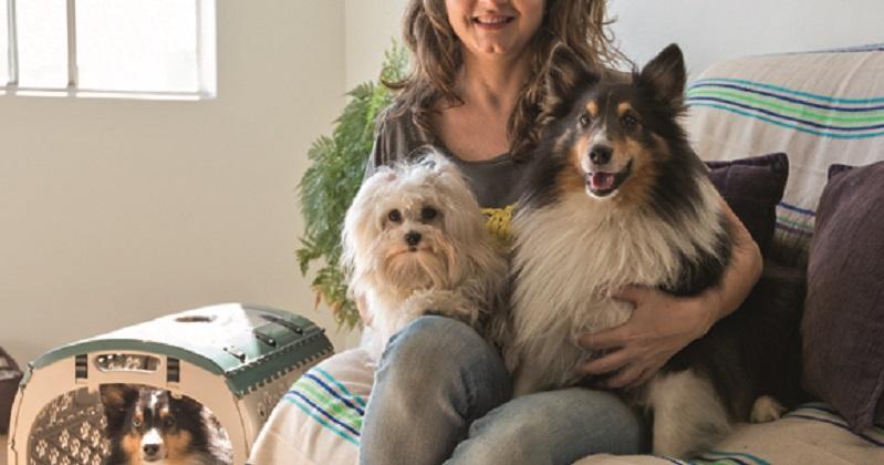 Cuidados com a higiene em animais que moram em apartamento
