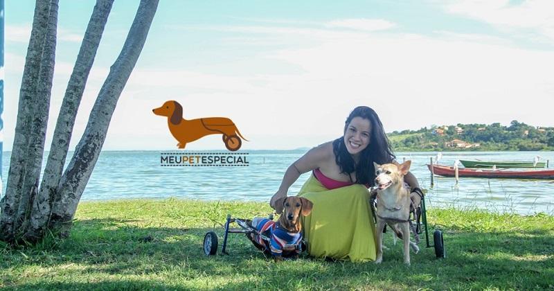 Meu Pet Ficou Paraplégico. E Agora?