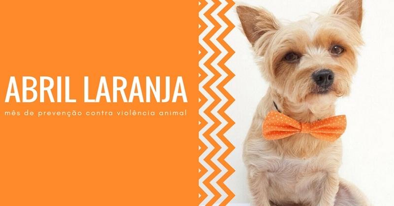 ABRIL LARANJA mês de prevenção da crueldade contra os animais