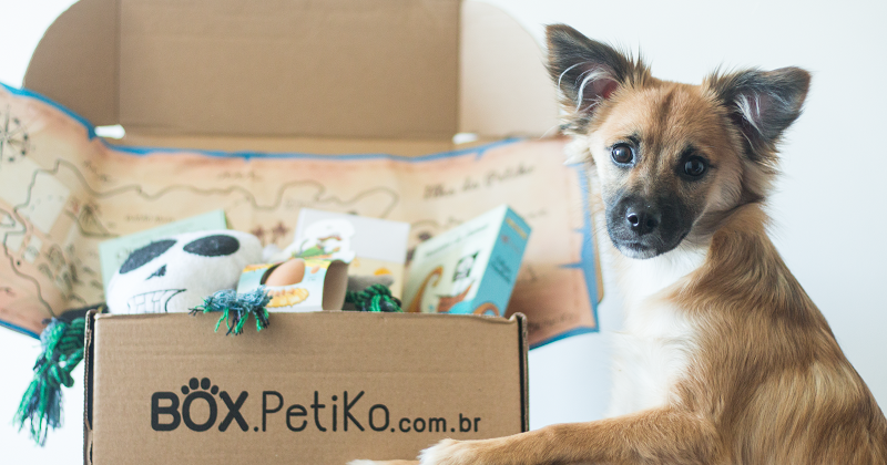 Tudo o que você precisa saber sobre BOX.Petiko
