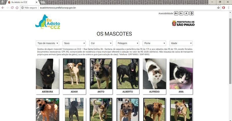 Você sabia? Existe um site para divulgar pets para adoção