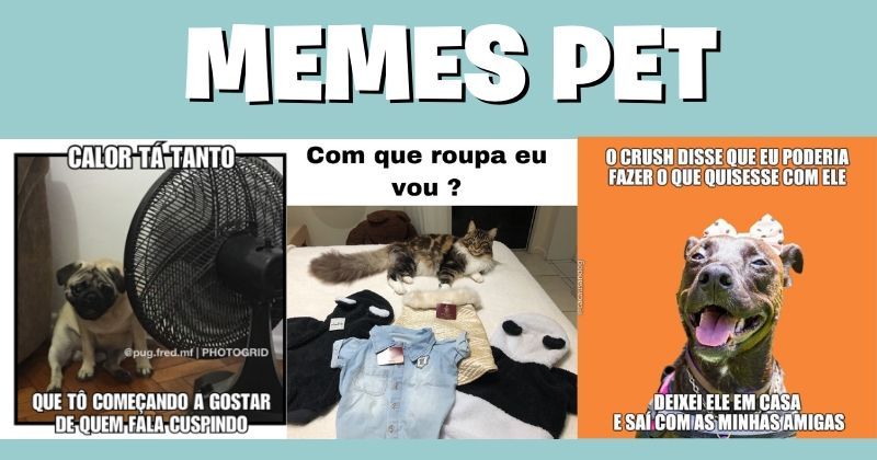 Memes Pet: Tudo Que Você Precisa Saber