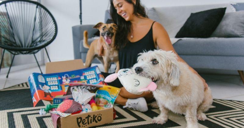 Por Que os Brinquedos para Cães da Petiko São os Ideais Para seu Pet?