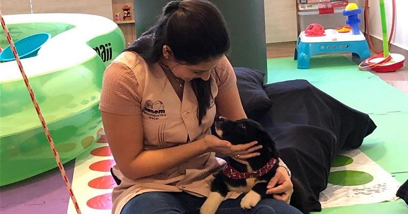 Nicole e os Primeiros Passos Para a Terapia Assistida por Animais