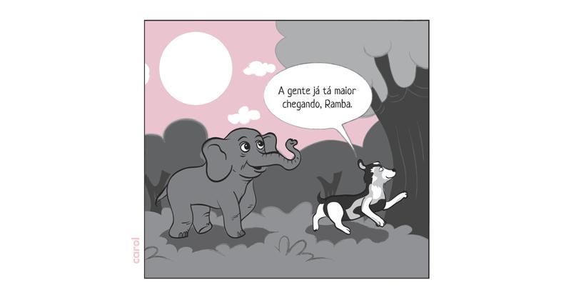 A Jornada de Ramba:Como Ajudar a Última Elefanta de Circo do Chile a Chegar ao Santuário de Elefantes Brasil