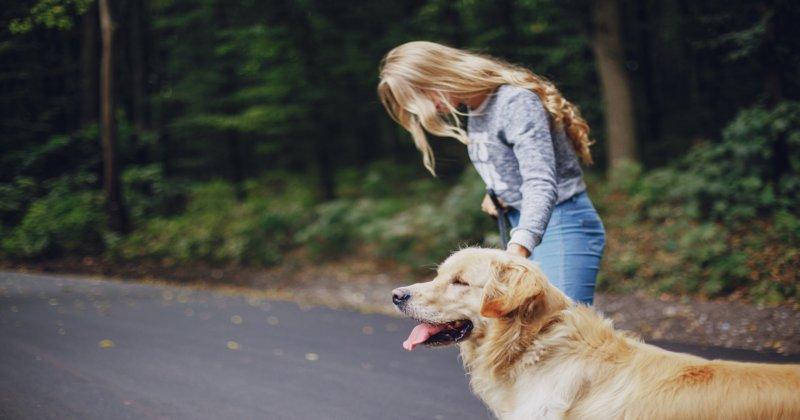 Terapia Assistida por Animais e seus Benefícios
