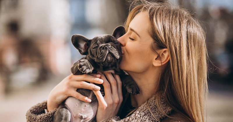 Perfume para Pets: Saiba Como Deixar seu Cão ou Gato Mais Cheiroso