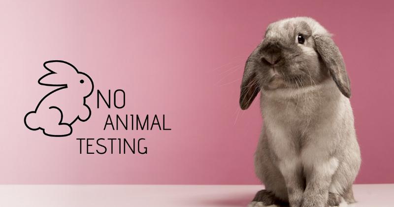 Testes de Produtos em Animais