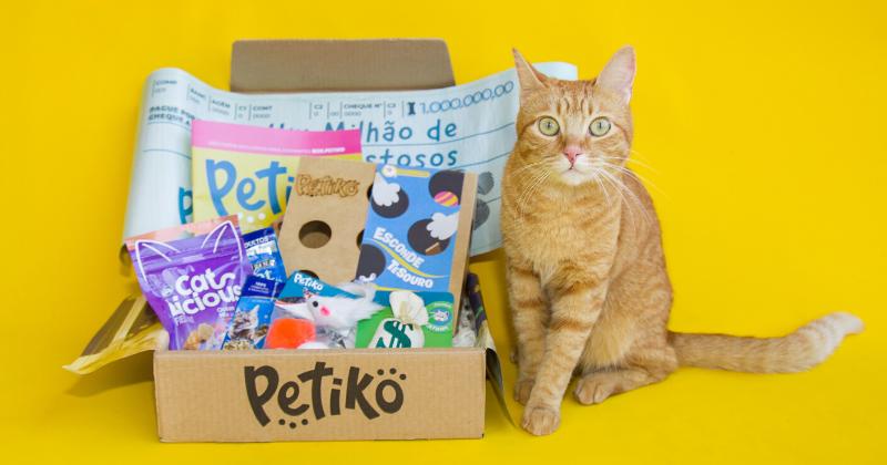 Conheça o BOX.Petiko Para Gatos