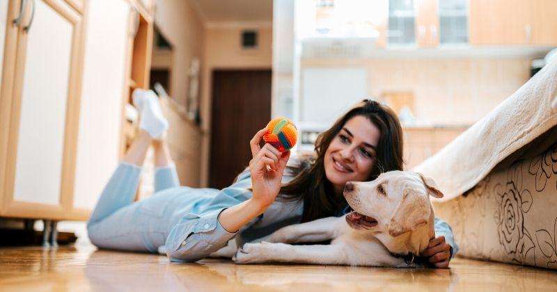 Cachorro em Apartamento: Guia Com as Principais Dúvidas (e Respostas) Sobre o Tema!