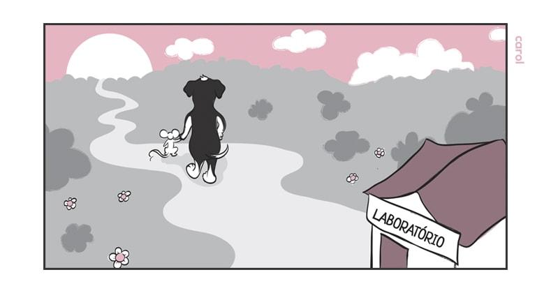 A Banalização dos Testes em Animais