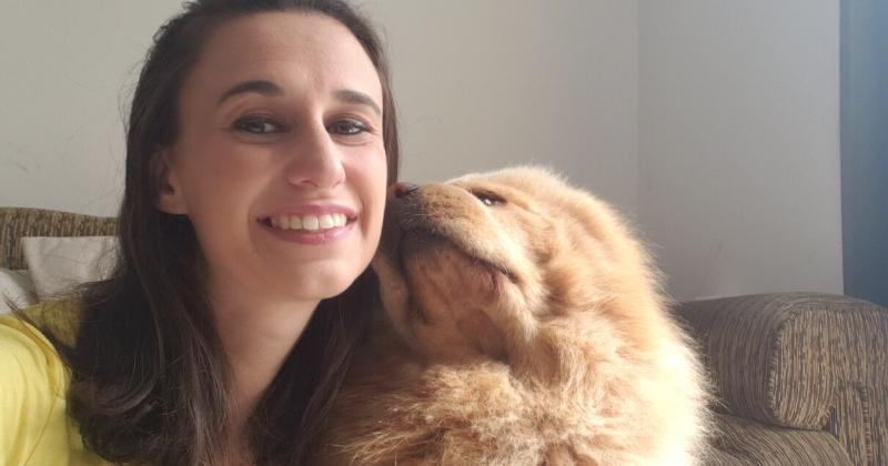 Raças Ideias para Cães de Apoio Emocional