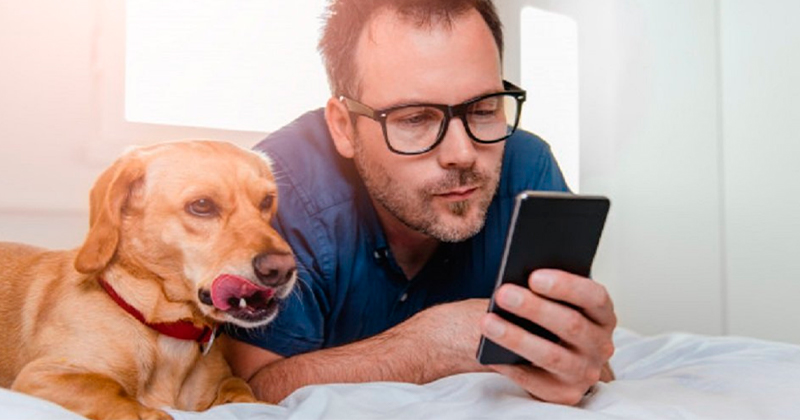 Os Cães Nos Reconhecem na Tela do Celular