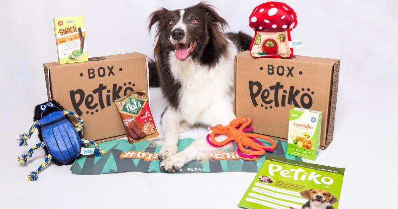 Aniversário Petiko: uma história de amor pelos pets